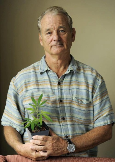 Bill Murray, actor norteamericano. (foto autor no identificado)